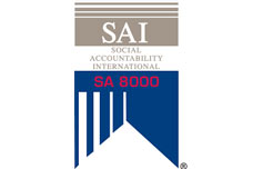 SA8000 Advanced Certificate